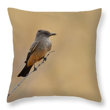 Say's Phoebe Throw Pillow by Tony Beck