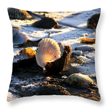 Half Shell On Ice Throw Pillow by Karen Wiles