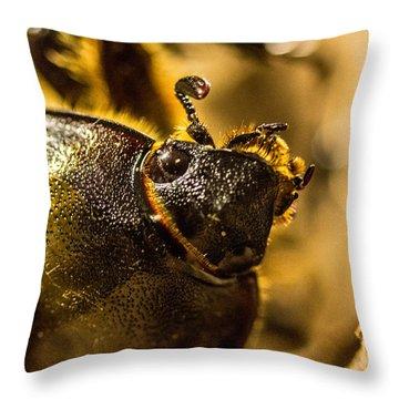 Scarab Head 1 Throw Pillow