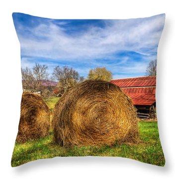 Scarecrow's Dream Throw Pillow by Debra and Dave Vanderlaan