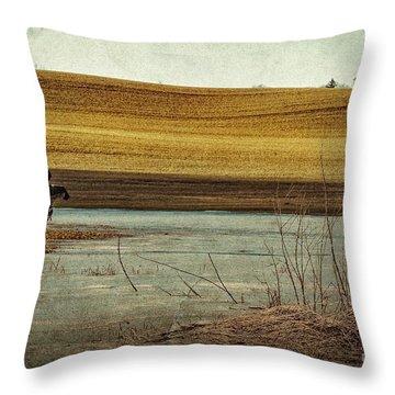 Scarecrow's Realm Throw Pillow