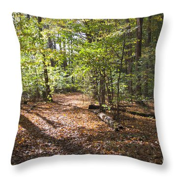 Scared Grove 2 Throw Pillow by William Norton