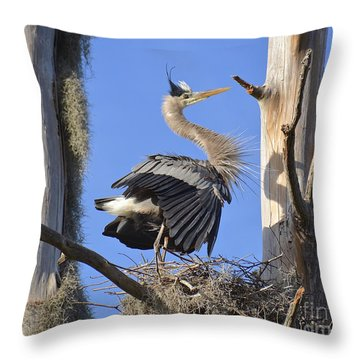 Scaring Away Vultures Throw Pillow by Carol  Bradley