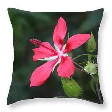 Scarlet Hibiscus #3 Throw Pillow