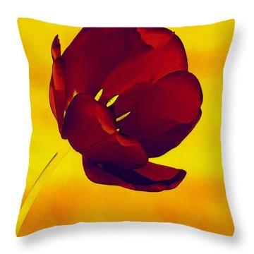 Scarlet Tulip At Sunset Throw Pillow