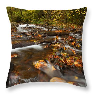 Scattered Leaves Throw Pillow by Mike  Dawson