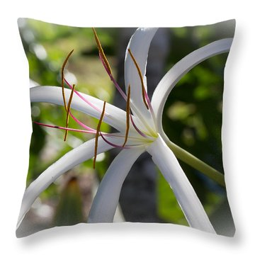 Spider Lilly Flower Throw Pillow