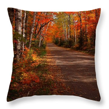 Scenic Maple Drive Throw Pillow