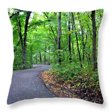Scenic Minnesota 12 Throw Pillow