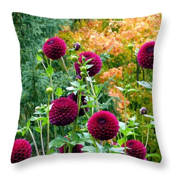 Scenic Minnesota 9 Throw Pillow