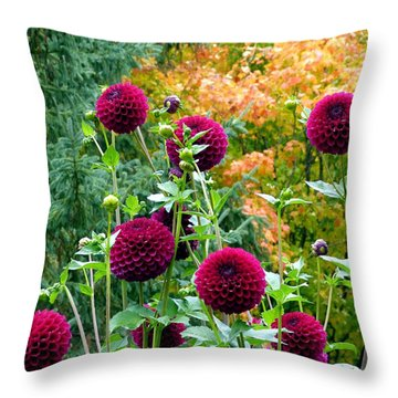 Scenic Minnesota 9 Throw Pillow by Will Borden