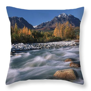 Scenic Of Granite Creek In Autumn Sc Throw Pillow by Calvin Hall