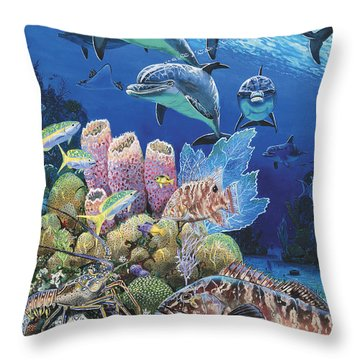 Scenic Route Re006 Throw Pillow by Carey Chen