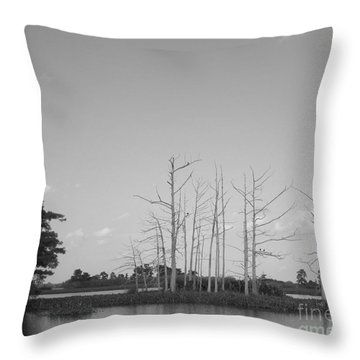 Throw Pillow featuring the photograph Scenic Swamp Cypress Trees Black And White by Joseph Baril