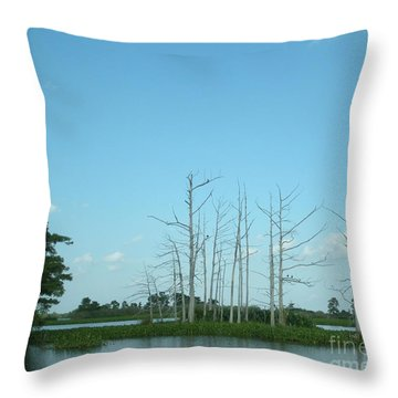 Throw Pillow featuring the photograph Scenic Swamp Cypress Trees by Joseph Baril