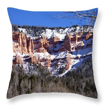 Throw Pillow featuring the photograph Scenic View by Ivete Basso Photography