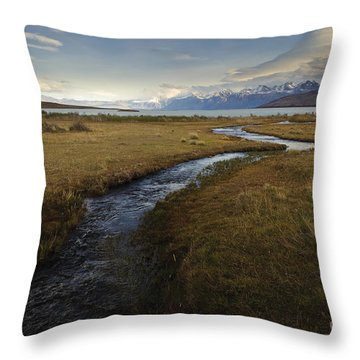 Scenic View Of Lake Viedma Throw Pillow by John Shaw