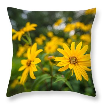 Schlitz Audubon Wild Flower Throw Pillow