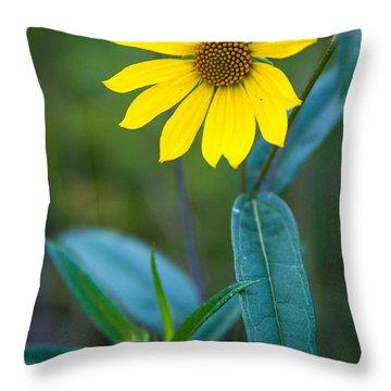 Schlitz Sunflower Throw Pillow