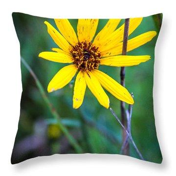 Schlitz Wild Flower Throw Pillow