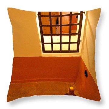 Throw Pillow featuring the photograph Schloss Vollrads by Steven Richman