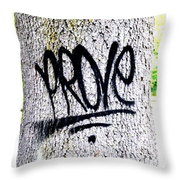 Scientific Graffiti  Throw Pillow by Steve Taylor