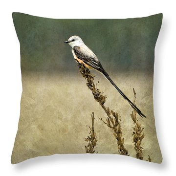 Scissortailed-flycatcher Throw Pillow by Betty LaRue