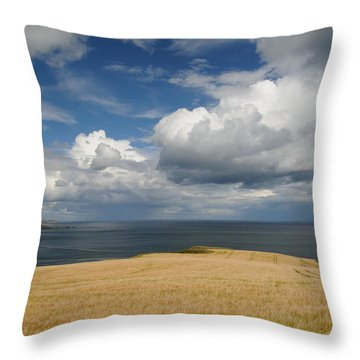Scottish Coastal Wheatfield Throw Pillow by Jeremy Voisey