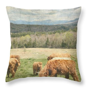 Scottish Highland Grazing  Throw Pillow