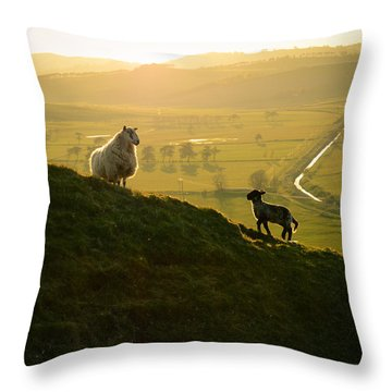 Scottish Sheep And Lamb Throw Pillow by Mr Doomits