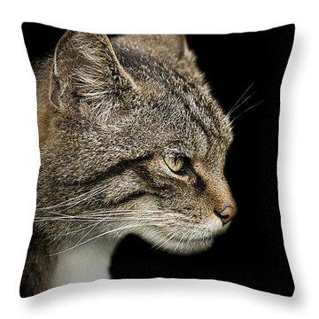 Scottish Wildcat Throw Pillow