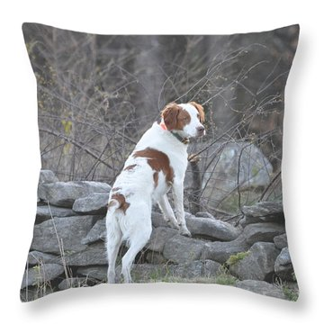 Scout Throw Pillow by Sally Rice
