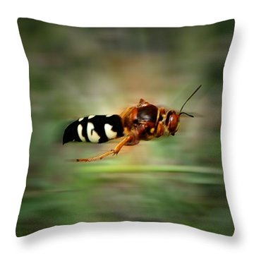Throw Pillow featuring the photograph Scouting Mission by Thomas Woolworth
