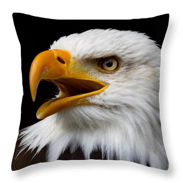 Screaming Bald Eagle Throw Pillow by Nick  Biemans