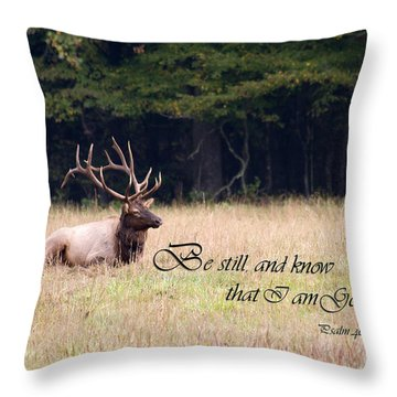 Scripture Photo With Elk Sitting Throw Pillow