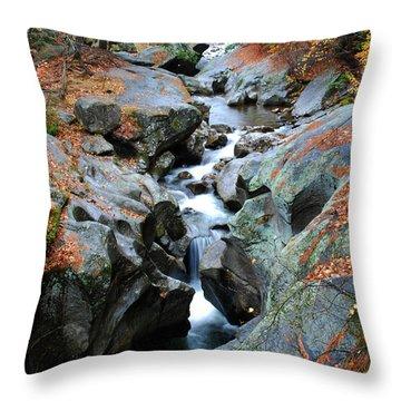 Sculptured Rocks Throw Pillow
