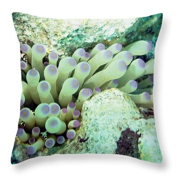 Throw Pillow featuring the photograph Sea Anemone With Squat Anemone Shrimp Family by Amy McDaniel