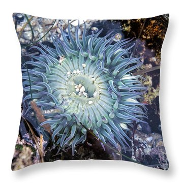 Sea Anenome Throw Pillow