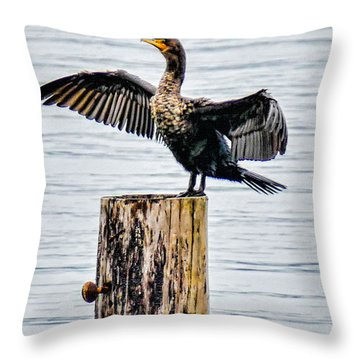 Sea Bird Throw Pillow by Ron Roberts