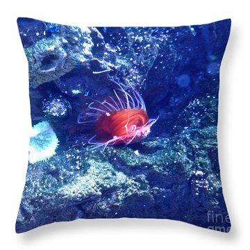 Sea Creatures 5 Throw Pillow