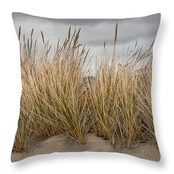 Sea Grass And Sand Throw Pillow