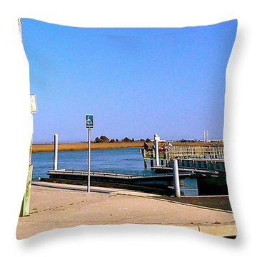 Sea Gulls Watching Over The Wetlands Throw Pillow by Amazing Photographs AKA Christian Wilson
