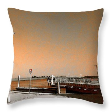 Sea Gulls Watching Over The Wetlands In Orange Throw Pillow by Amazing Photographs AKA Christian Wilson