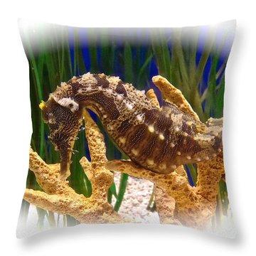 Sea Horse Hippocampus Throw Pillow