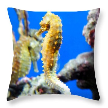 Sea Horses Throw Pillow by Amy McDaniel