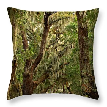 Sea Island Oaks Portrait Throw Pillow