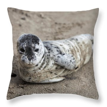 Seal Baby Throw Pillow by David Millenheft