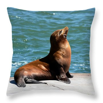 Sea Lion Posing On Boat Dock Throw Pillow