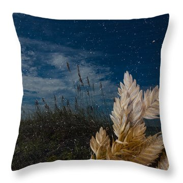 Sea Oat Beach Throw Pillow