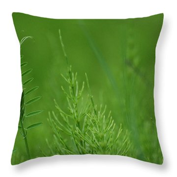 Throw Pillow featuring the photograph Sea Of Green by Bianca Nadeau